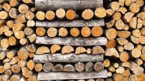 Как правильно выбрать и купить дрова